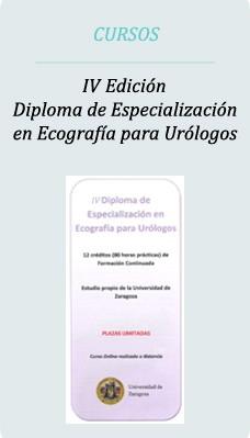 cursozaragoza2014